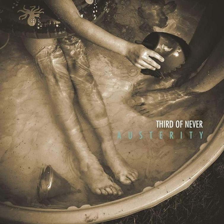 austerity album cover
